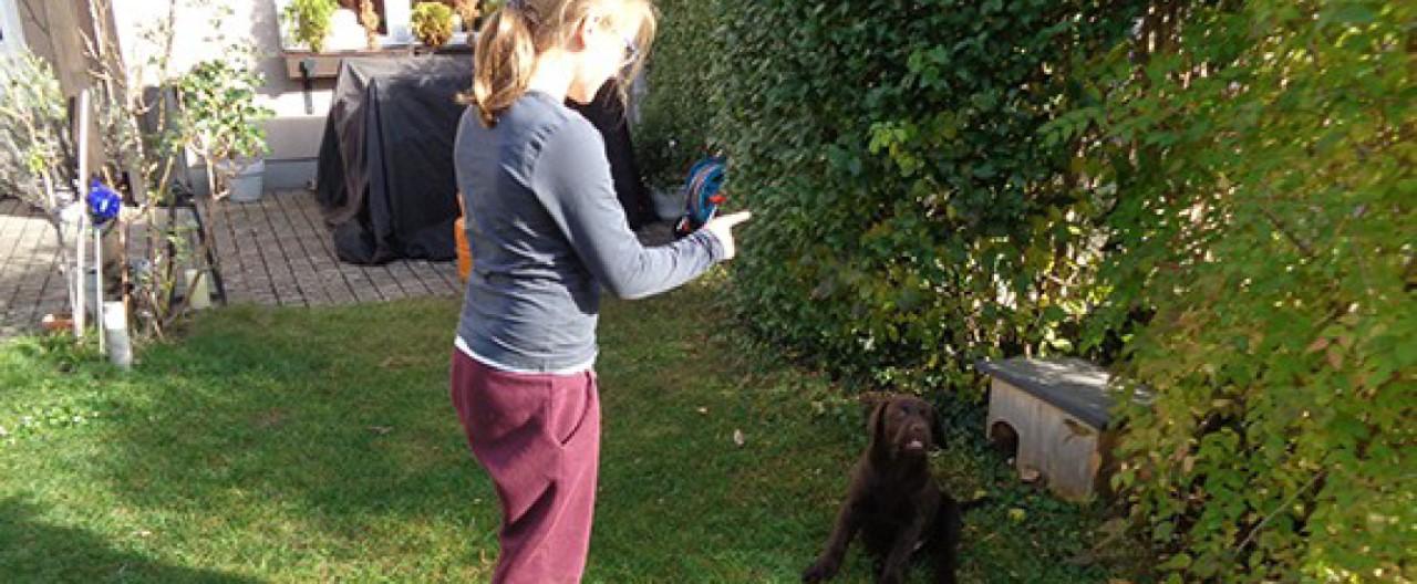 The Story of Sophie & Max – Das Training beginnt