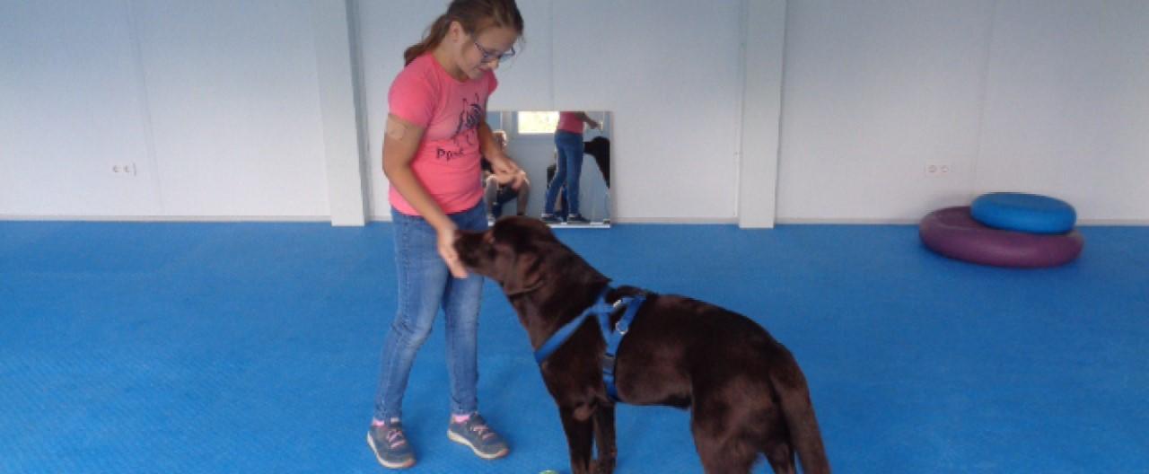 The Story of Sophie & Max: Der richtige Umgang mit den Hypoproben