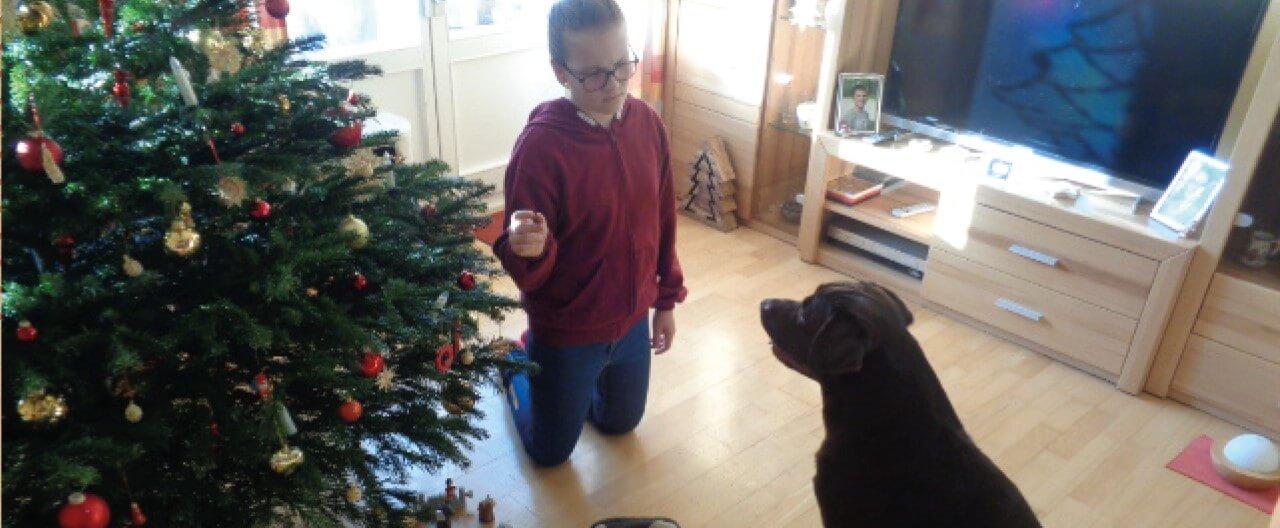 The Story of Sophie & Max: So hat Max Weihnachten erlebt