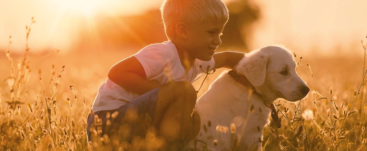 Welpen und Kinder: Tipps für ein respektvolles Miteinander