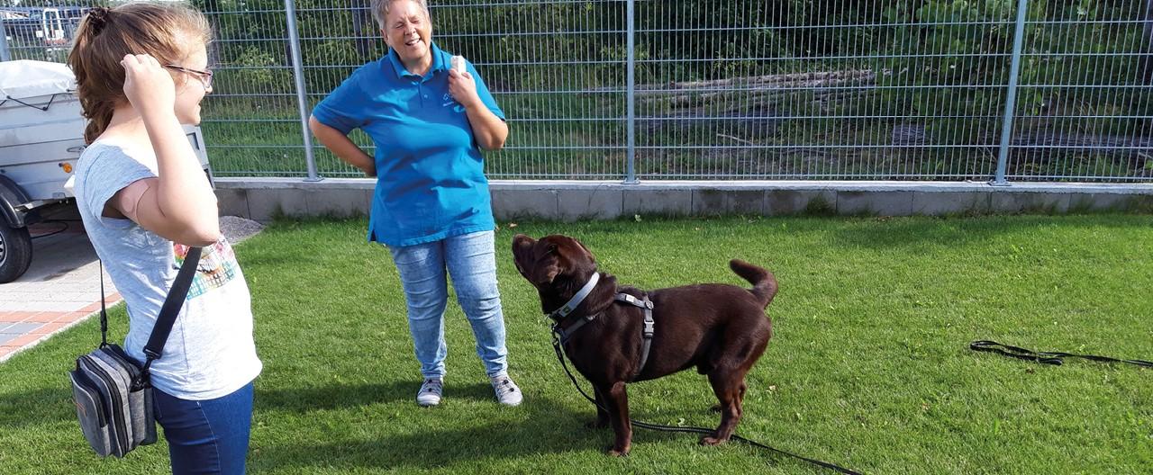 The Story of Sophie & Max: Das Training für die Diabetikerwarnhund-Prüfung geht weiter