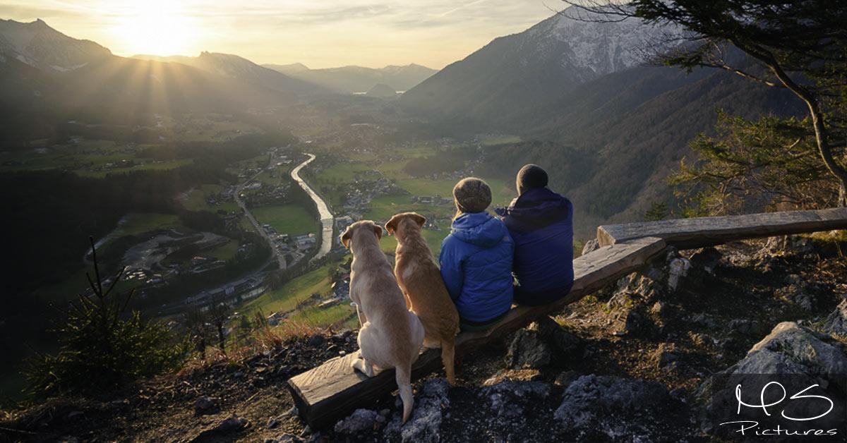 Wandern mit Hund – Tipps!