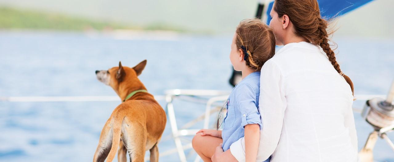 Schiff Ahoi: Segeln mit Hund an Bord