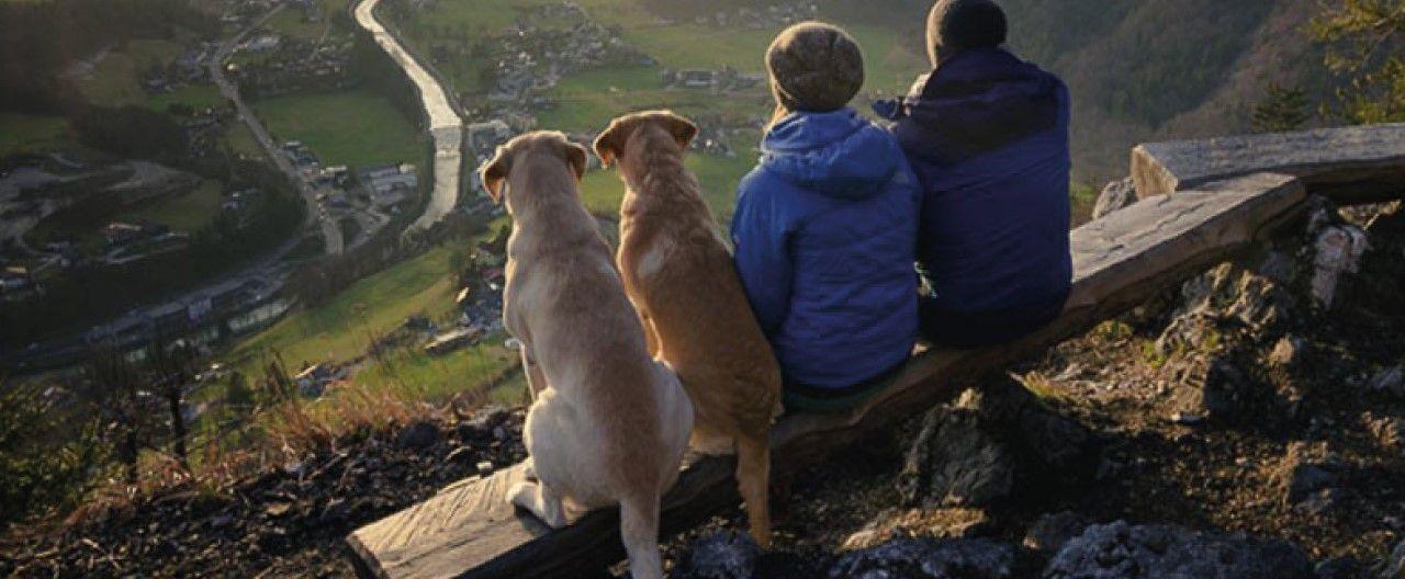 THE-GOODSTUFF_Wandern-mit-Hund
